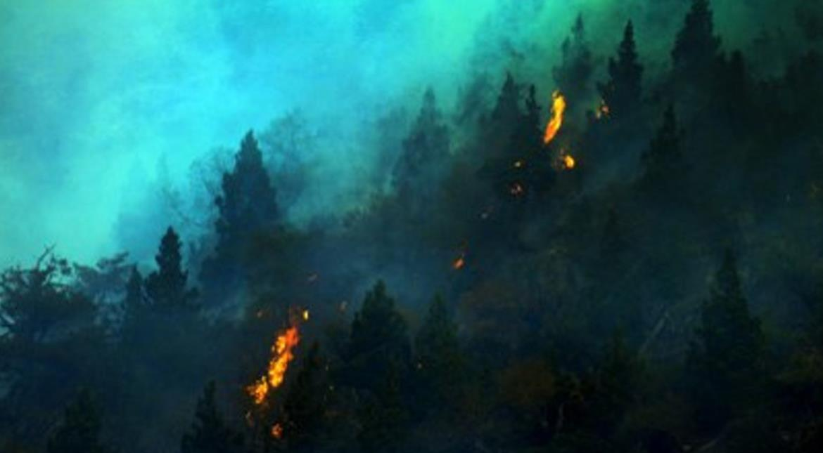 Wildfire destroys homes in Chile, hundreds evacuated